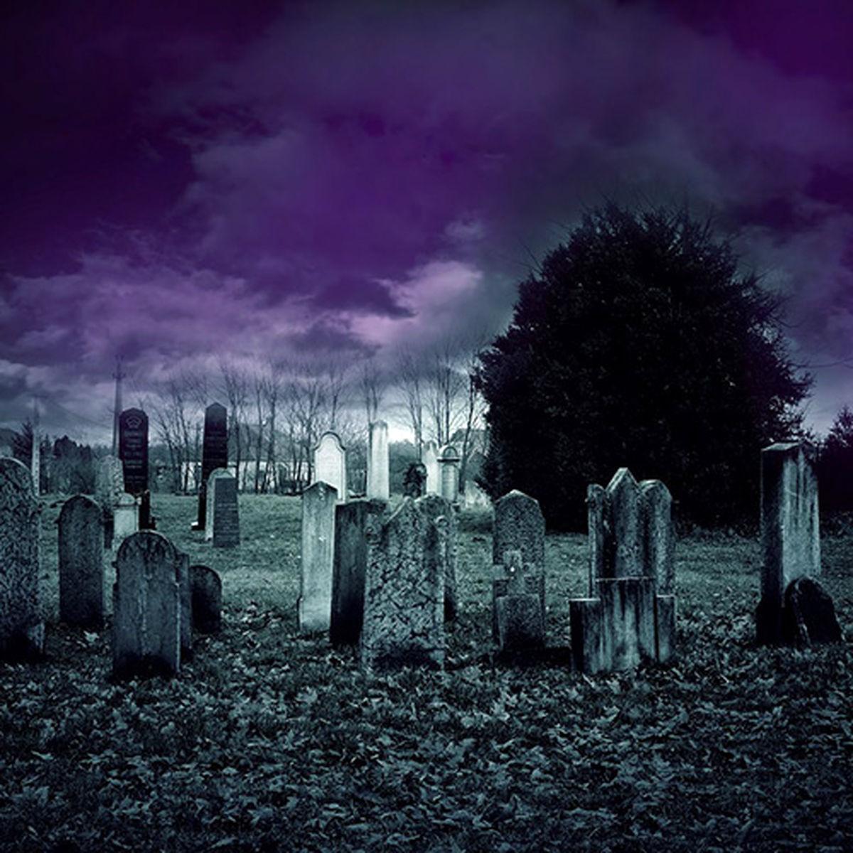 صدای عجیب در یک قبر همه را شوکه کرد + فیلم نبش قبر